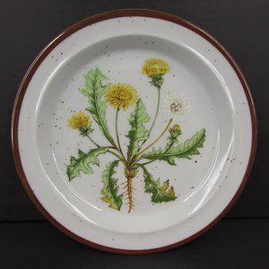 Dandelion 206 Japan Brown Speckle Stoneware Plate
